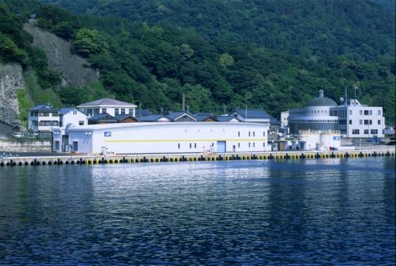 福井県漁連越前支所